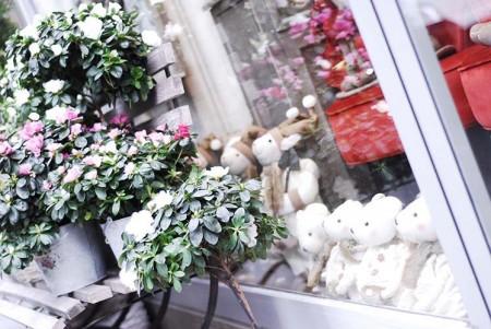 Jardin Dobrée fleuriste à nantes