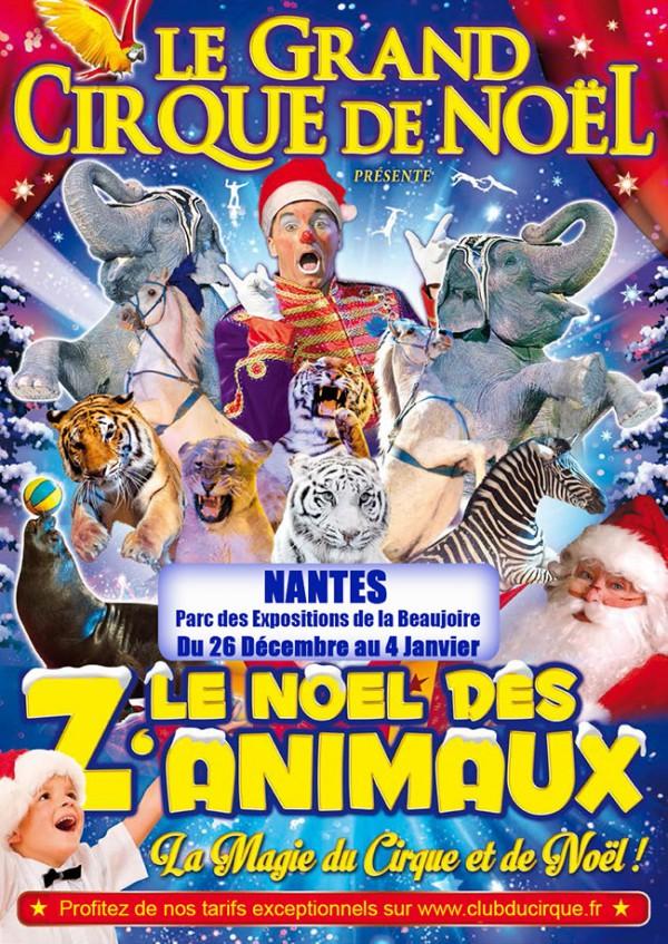 cirque-nantes-noel